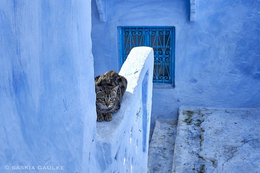 1812-MarokkoSKG-6331-Kopie.jpg